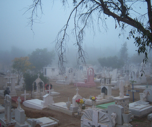 pale, grunge, and cemetery image