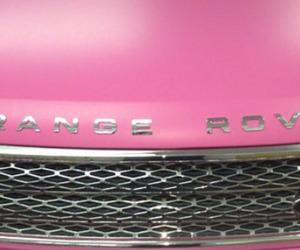 grey, header, and pink image