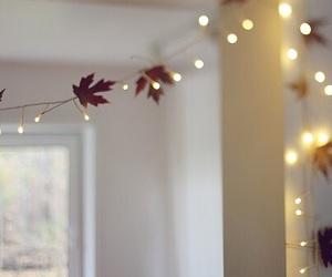 light, autumn, and fall image