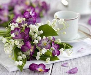 flowers and violet image