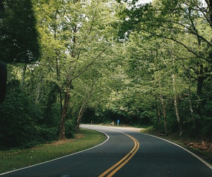 nature, road, and roadtrip image