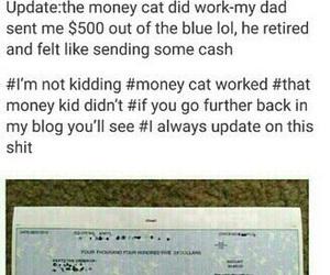 money, cat, and moneycat image
