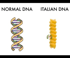 biology, DNA, and fanny image