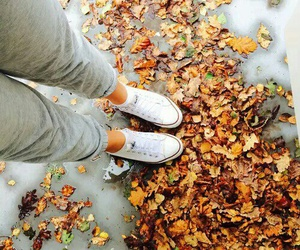 autumn, converse, and girl image