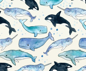whale, wallpaper, and background image