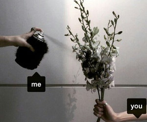 black, me and you, and flowers image