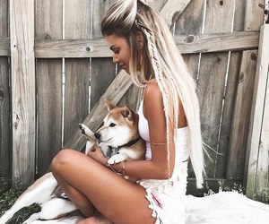 dog, hair, and fashion image