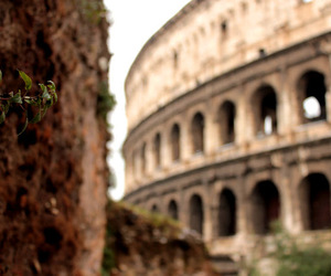 colloseum, photograph, and photography image