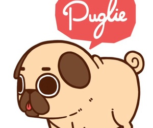pug and cute image