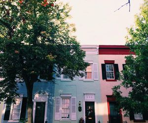 colors, house, and lilac image