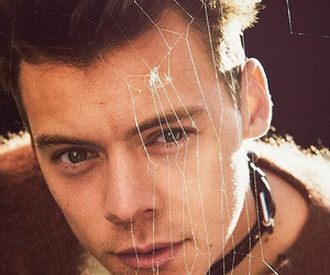 beautiful, brown hair, and Harry Styles image