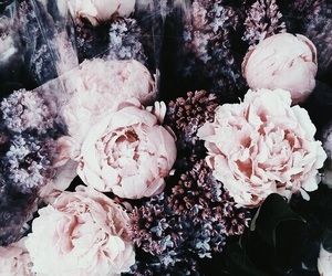 flowers and canipostthistomyinsta image