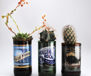 bar, beer, and birthday image