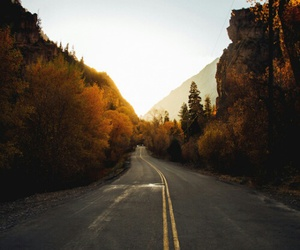 fall, road, and autumn image