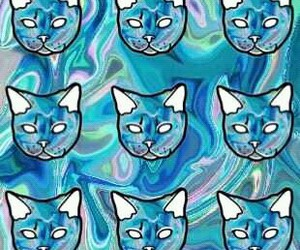 cat, background, and skin image