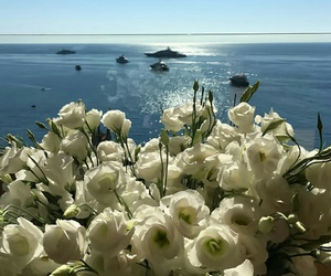 flowers, ocean, and photography image