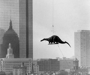 dinosaur, black and white, and helicopter image