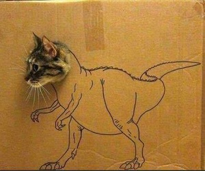 cat, dinosaur, and funny image