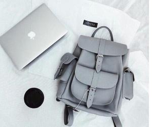 fashion, grey, and apple image
