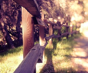 autumn, country, and fence image
