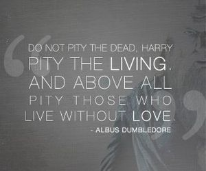 quotes, harry potter, and albus dumbledore image