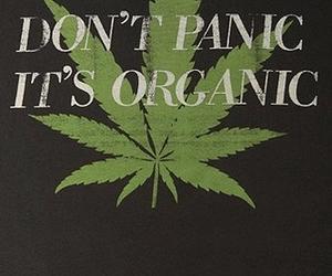 weed, organic, and marijuana image