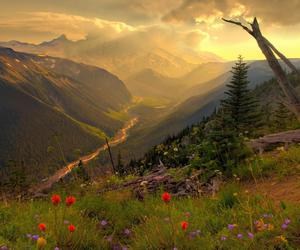 mountains, valley, and photography image
