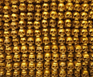 skull and gold image