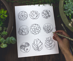 succulent, art, and drawing image