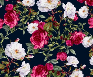roses, flowers, and pattern image