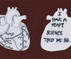 heart, quotes, and science image