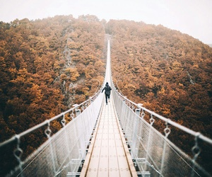 autumn and bridge image