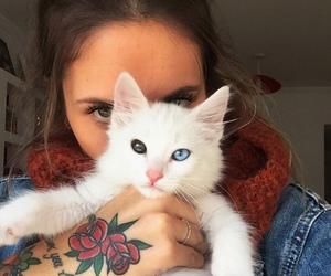 animal, cat, and tattoo image