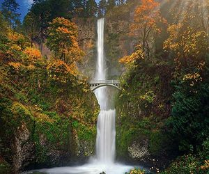 Multnomah Falls, oregon, and outdoors image