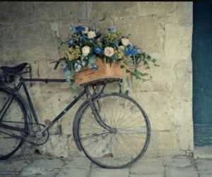 flowers, vintage, and bike image