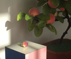 aesthetic, peach, and tumblr image