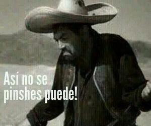 divertido, mexicanos, and gracioso image