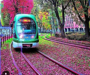 colors, flowers, and milan image