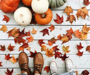 autumn, pumpkin, and fall image