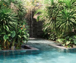 pool, summer, and nature image