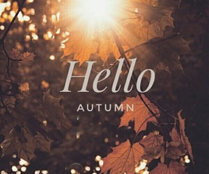 autumn, hello, and live image