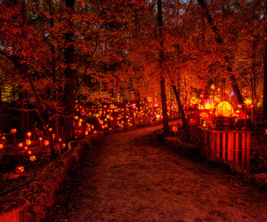 autumn, Halloween, and october image