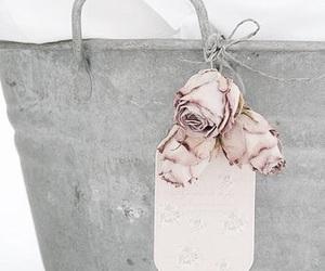 grey, pink, and rose image