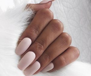 baby pink, beauty, and nails image