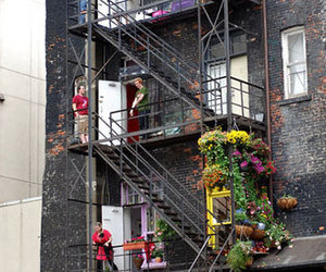 apartment therapy, new york, and fire escape image