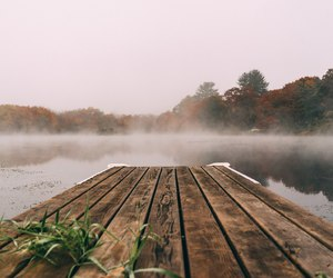 nature and fog image