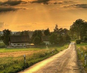 nature, road, and sun image
