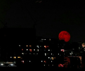 moon, night, and red image