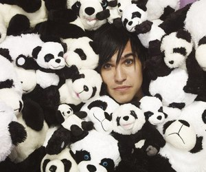pete wentz and fall out boy image