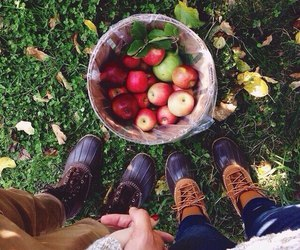 apple, love, and autumn image
